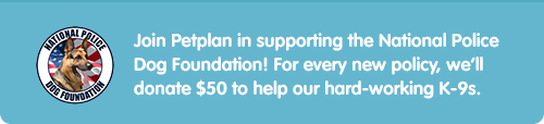 Join Petplan in supporting the National Police Dog Foundation!